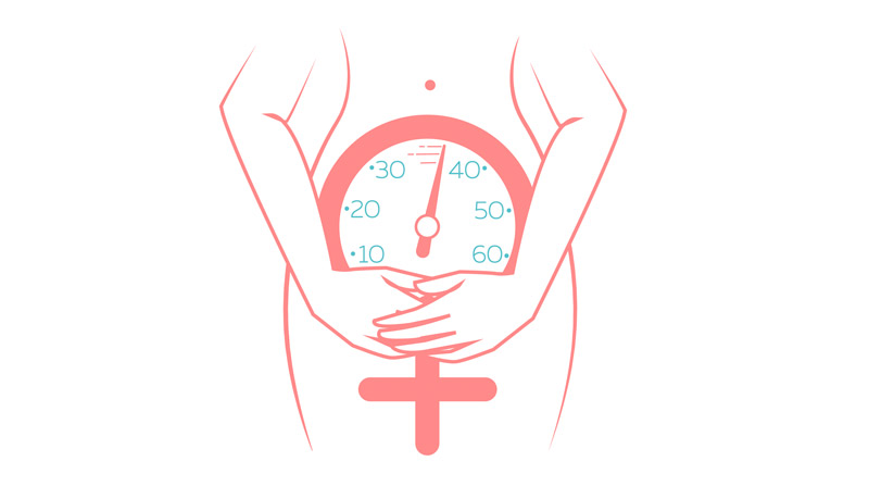 illustration about women's health about the different types of menopause